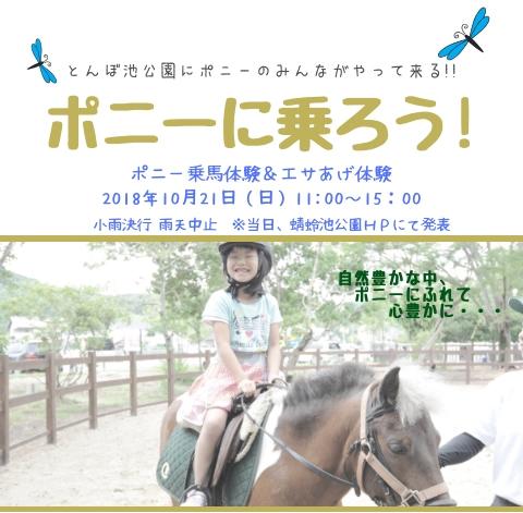 10/21 蜻蛉池公園 ポニー乗馬体験&エサあげ体験