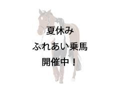 【終了】夏休み『ふれあい乗馬』開催します!