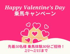【受付終了】Happy Valentine's Day乗馬キャンペーン!2/1~15まで先着50名様乗馬体験ご招待!
